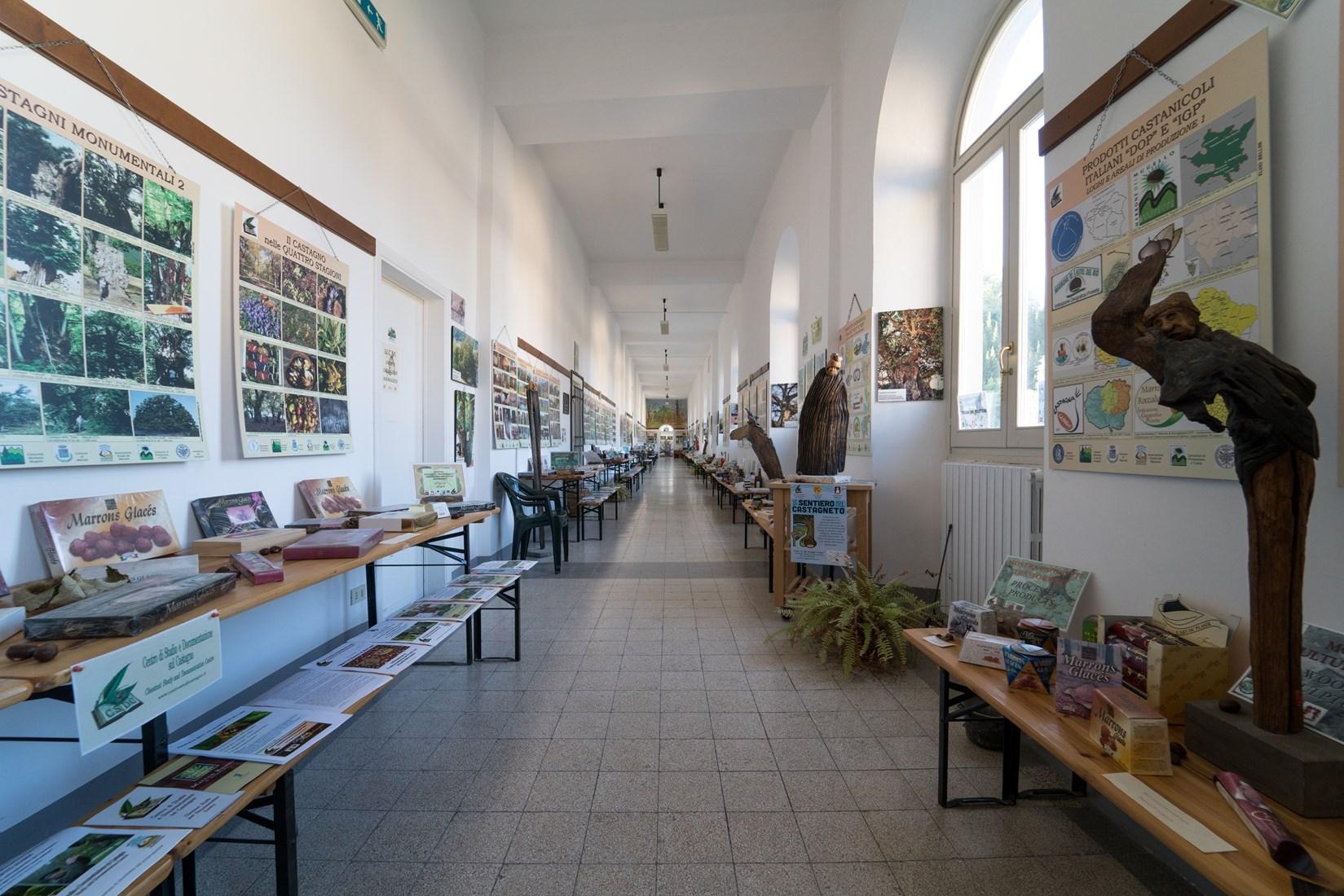 Centro studi del Castagno